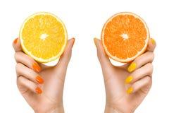Kvinnan räcker hållande nya citrusfrukter begreppet bantar sunt Royaltyfria Bilder