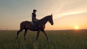 Kvinnan rider upp en häst i fältet, slut arkivfilmer