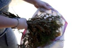 Kvinnan sätter dödblommor inom en avskrädepåse - ecobegrepp lager videofilmer
