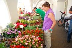 Kvinnan ser blommor i en lokal marknad Royaltyfria Foton