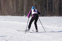 Kvinnan skidar, går på att skida i skogen på fullföljande för nummer 49 Royaltyfri Foto