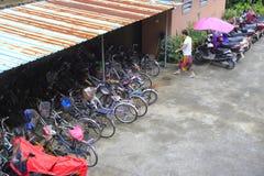 Kvinnan skriver in cykelskyddet Royaltyfri Bild