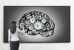 Kvinnan som arbetar på hjärnan, skissar på svart tavla Arkivfoton