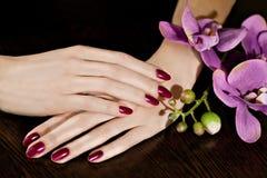 Kvinnan som att applicera spikar fernissa för att fingra, spikar Royaltyfri Bild