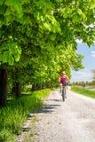 Kvinnan som cyklar en mountainbike i stad, parkerar, sommardagen Royaltyfri Bild