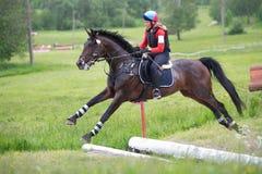 Kvinnan som eventer på häst är, övervinner det öppna diket Royaltyfria Foton