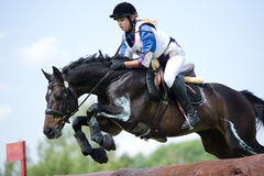 Kvinnan som eventer på häst är, övervinner journalstaketet Arkivbilder
