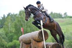 Kvinnan som eventer på häst är, övervinner journalstaketet Arkivfoto