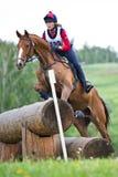 Kvinnan som eventer på häst är, övervinner journalstaketet Royaltyfria Foton