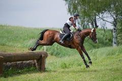 Kvinnan som eventer på häst är, övervinner journalstaketet Arkivfoton