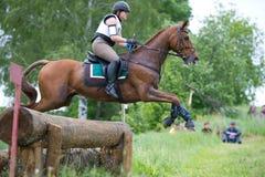 Kvinnan som eventer på häst är, övervinner journalstaketet Arkivbild