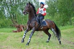 Kvinnan som eventer på häst är, övervinner skidahoppet Arkivbilder