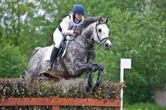 Kvinnan som eventer på häst är, övervinner staketet Arkivbild