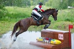 Kvinnan som eventer på häst är, övervinner staketet i vatten Royaltyfri Bild