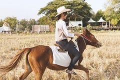 Kvinnan som ler med, kopplar av tid på liten häst Arkivfoto