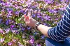 Kvinnan som mediterar i en yoga, poserar på gräsmattan med krokusar Royaltyfri Fotografi