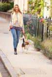Kvinnan som tar hunden för, går på stadsgatan Arkivbild