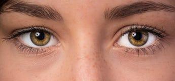 Kvinnan synar med långa ögonfranser Arkivbilder