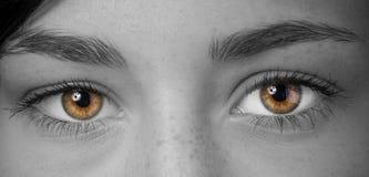 Kvinnan synar med långa ögonfranser Arkivbild