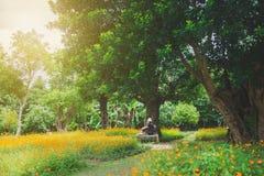 Kvinnan tycker om ögonblick med blomman i fält Arkivfoton