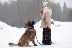 Kvinnan utbildar den Caucasian herden, och gårdhunden på en snöig jordning i parkerar arkivfoto