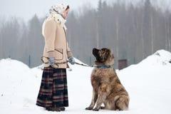 Kvinnan utbildar den Caucasian herden, och gårdhunden på en snöig jordning i parkerar arkivbilder