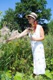 Kvinnan väljer blommor Fotografering för Bildbyråer