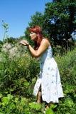 Kvinnan väljer blommor Royaltyfri Foto