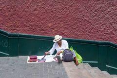 Kvinnan visar till salu Scarves Royaltyfri Foto