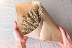 Kvinnans händer gör gruppen av öron av havre med det pastellfärgade siden- bandet i det kraft papperet arkivfoton