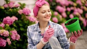 kvinnaomsorg av blommor i trädgård lycklig kvinnaträdgårdsmästare med blommor Växthusblommor hydrangea Vår och sommar arkivfilmer