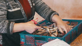Kvinnarengöringar och ny fisk för snitt i fiskmarknad arkivfilmer