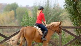 Kvinnaridninghäst, tillbaka sikt arkivbild