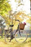 Kvinnas cykel med korgen och blommor Arkivfoto