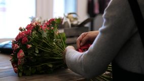 Kvinnas händer, som gör en bukett av blommor i en blomsterhandel, band för en dam ett pilbågeband som gör grön stammar med sidor lager videofilmer