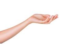 Kvinnas hand arkivfoton