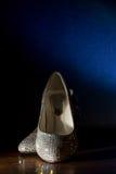 Kvinnas Swarovski Crystal Shoes Arkivbild