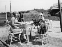 Kvinnasammanträde på tabellen utanför med tre hundkapplöpning (alla visade personer inte är längre uppehälle, och inget gods finn royaltyfria foton