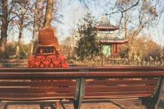 Kvinnasammanträde parkerar på bänken i vinter Royaltyfria Bilder