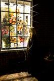 Kvinnashopping i Williamsburg, Virginia Arkivfoton