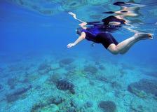 Kvinnasimning med havssköldpaddan tropiskt bakgrundshav Arkivfoto