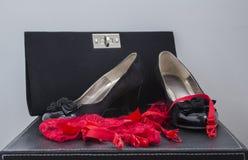 Kvinnaskounderbyxorar och handväska Arkivbild