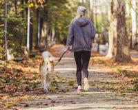 Kvinnaspring och att gå med hennes hund parkerar in arkivfoto