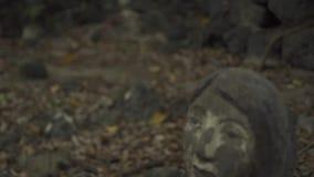 Kvinnastatyer som begravas till midjan i jordning Kvinnlig skulptur och monument av forntida kultur- och egenasiatfolk arkivfilmer