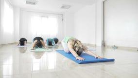 Kvinnastudenter som utarbetar deras böjlighet på ett mattt under en yogagrupp i ultrarapid -