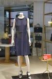 Kvinnastyckklänning Fotografering för Bildbyråer