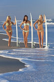 Kvinnasurfarear på bikinier med surfingbrädor på Beac royaltyfri fotografi