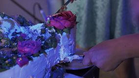 Kvinnatagandestycke av kakan med den pålagda plattan för rosor på berömhändelsen lager videofilmer
