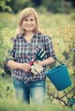 Kvinnaträdgårds-hjälpmedel Arkivfoto