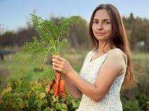 Kvinnaträdgårdsmästare med en skörd av morötter Fres för personhållskörd Royaltyfri Bild